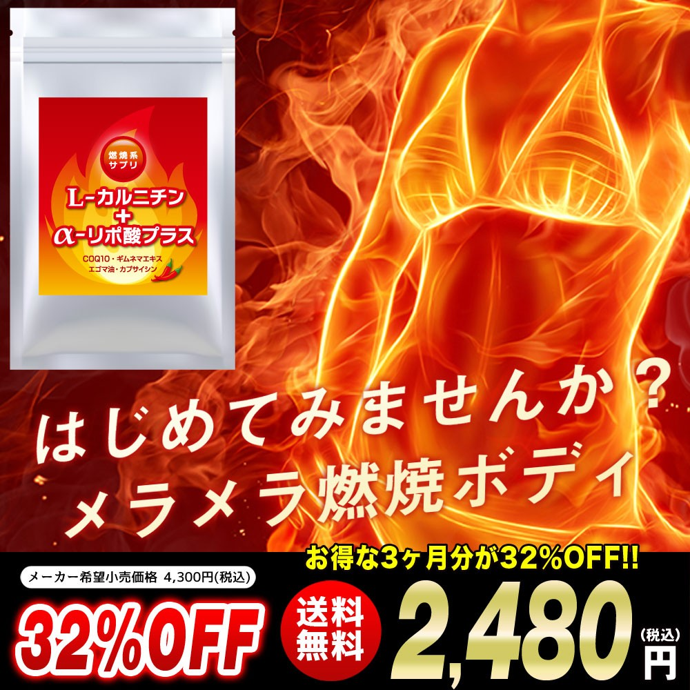 L-カルニチン リポ酸 脂肪燃焼 燃焼ダイエット 痩せる