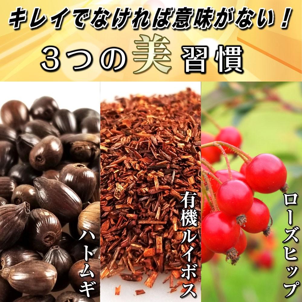 ダイエットティー ダイエット茶 便秘予防 美容 健康