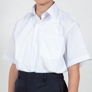スクールシャツ 半袖 男子 学生服 カッターシャツ 110cmA〜180cmB (制服 シャツ 白 中学生 高校生 男の子)(送料無料) (取寄せ) すててこねっと
