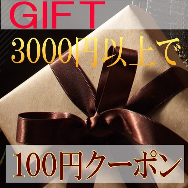 ギフト3000円以上お買い上げで100円クーポン