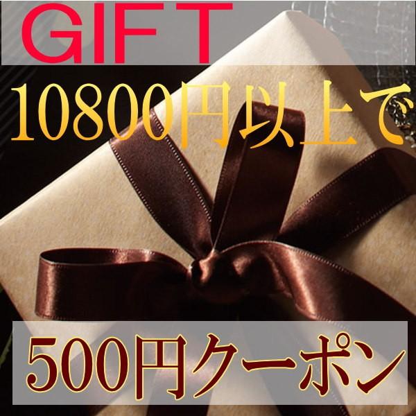 ギフト10800円以上お買い上げで500円クーポン