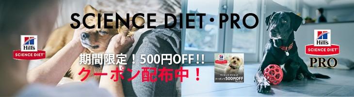 ヒルズ500円クーポン