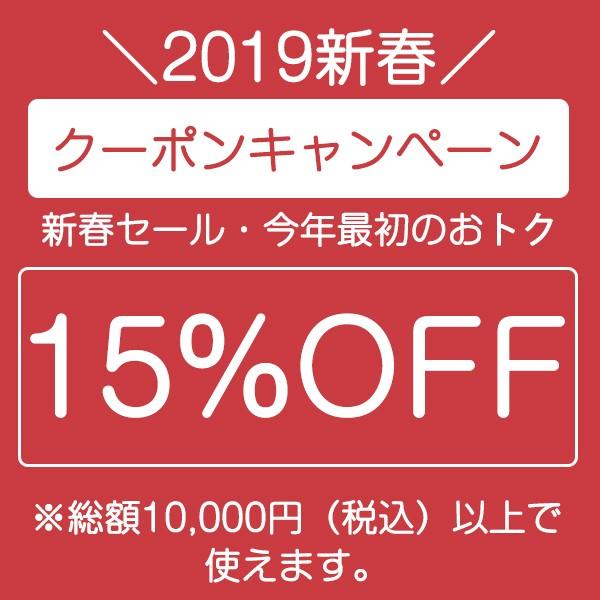 2019新春キャンペーン10000円―15%