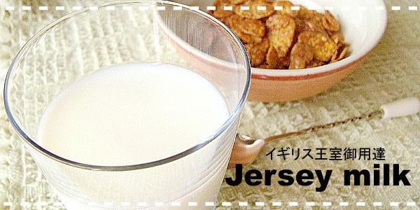 ジャージー牛乳のヒミツ
