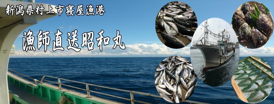 新潟県村上市から漁船昭和丸が日本海の恵みを漁師直送