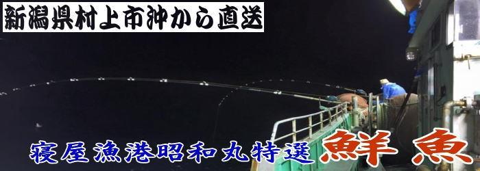 yahoosengyoheda