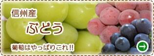 信州産 葡萄