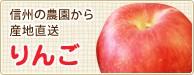 信州の農園から産地直送 りんご