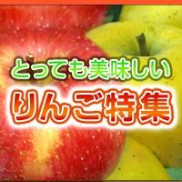 とっても美味しい りんご特集