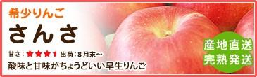 希少りんご「さんさ」 酸味と甘味がちょうどいい早生りんご