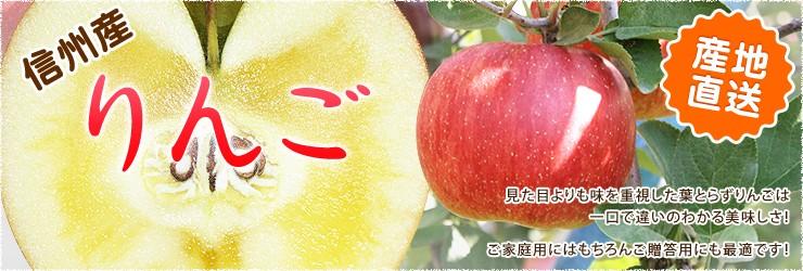 産地直送 信州産 りんご見た目よりも味を重視した葉とらずりんごは一口で違いのわかる美味しさ! ご家庭用にはもちろんご贈答用にも最適です!