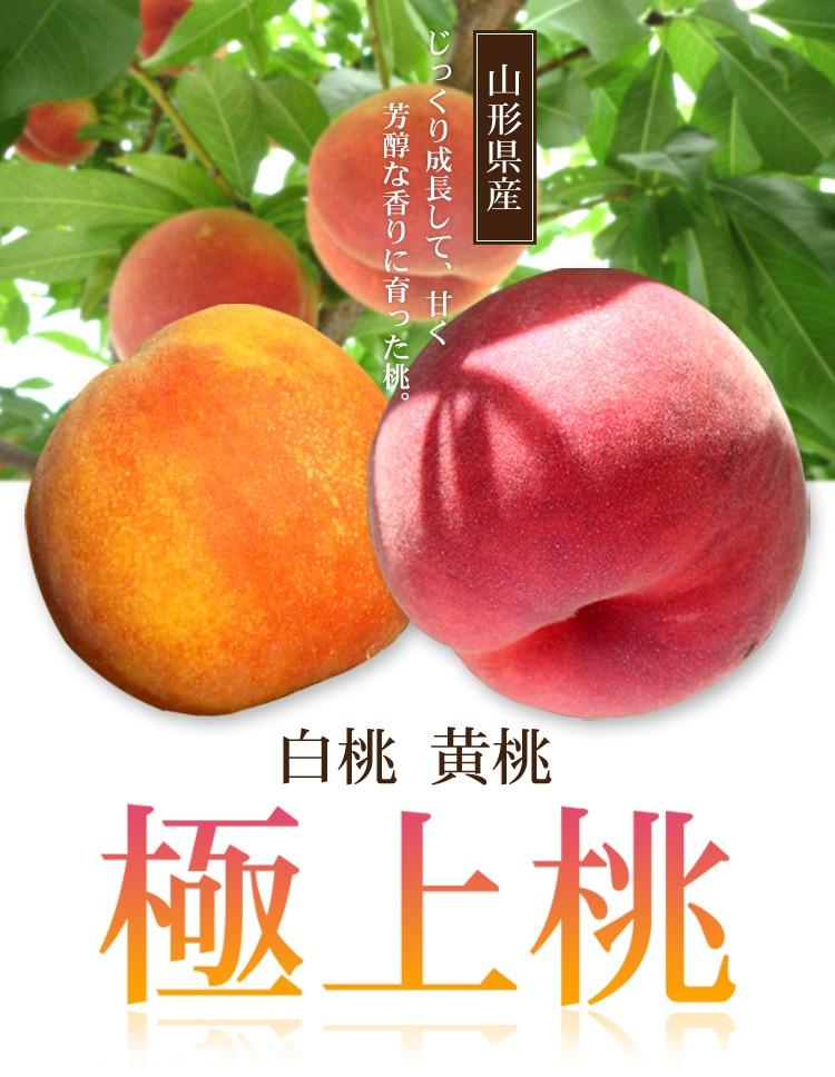 山形県 極上桃