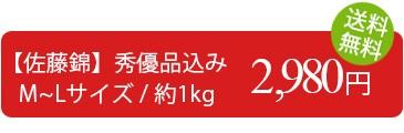 訳あり さくらんぼ 佐藤錦 1kg 送料無料 (秀・優品込みM-Lサイズ)