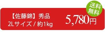訳あり さくらんぼ 佐藤錦 1kg (秀品・2Lサイズ) 送料無料