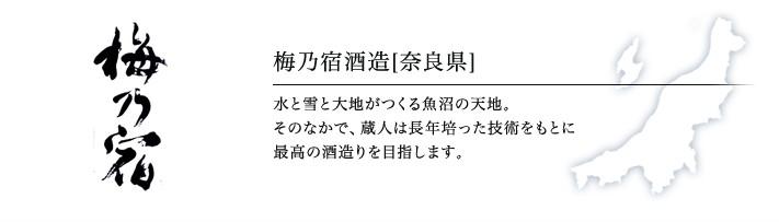 梅乃宿酒造「あらごし梅酒」(奈良)