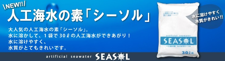 人口海水の素シーソル