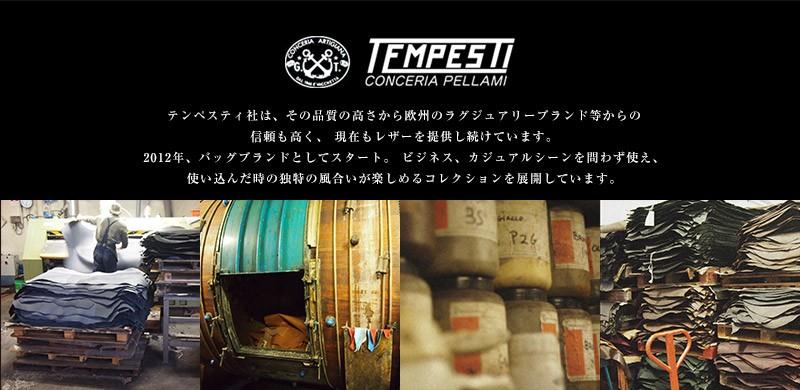 TEMPESTI(テンペスティ)のイメージ画像