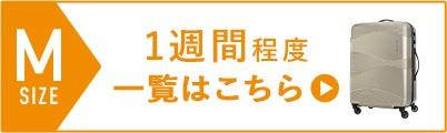 スーツケーズ_Mサイズ