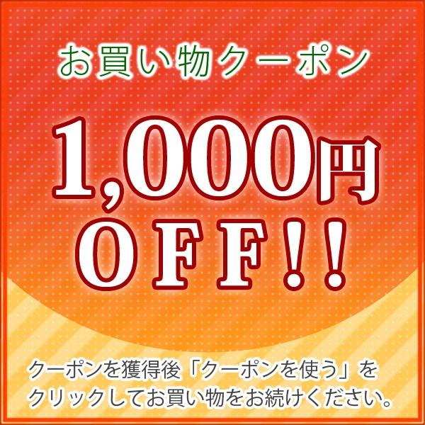 【1000円OFF】コスモパックL型限定クーポン