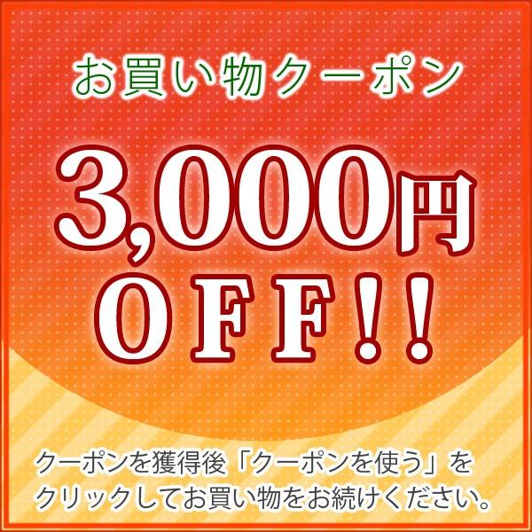 【3000円OFF】コスモパックDX60限定クーポン