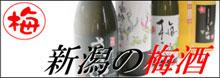 新潟の梅酒