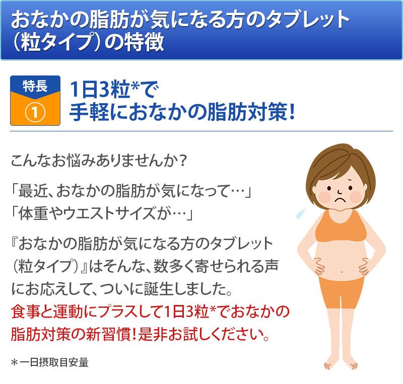 おなかの脂肪が気になる方のタブレットの特徴1