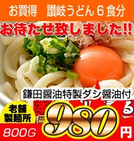【送料無料】鎌田醤油特製ダシ醤油6袋付き!!讃岐うどん6食分600g