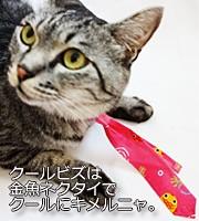 ブランドネクタイ専門店Tai家で探すクールビズネクタイ