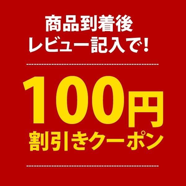 【着後商品レビュー記入で】100円OFFクーポン