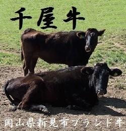 『岡山県新見市ブランド牛 千屋牛』の魅力はこちらから