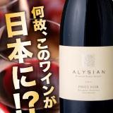 何故、このワインが日本に!?