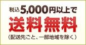 税込5000円以上で送料無料(配送先ごと、一部地域を除く)
