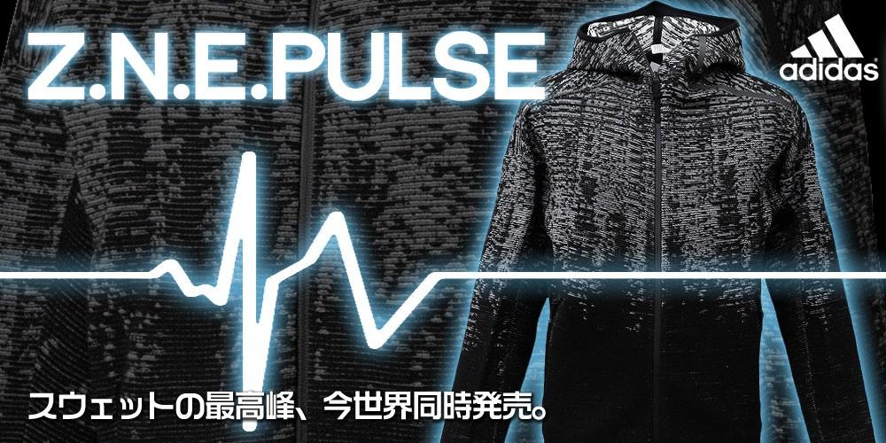 zne pulse