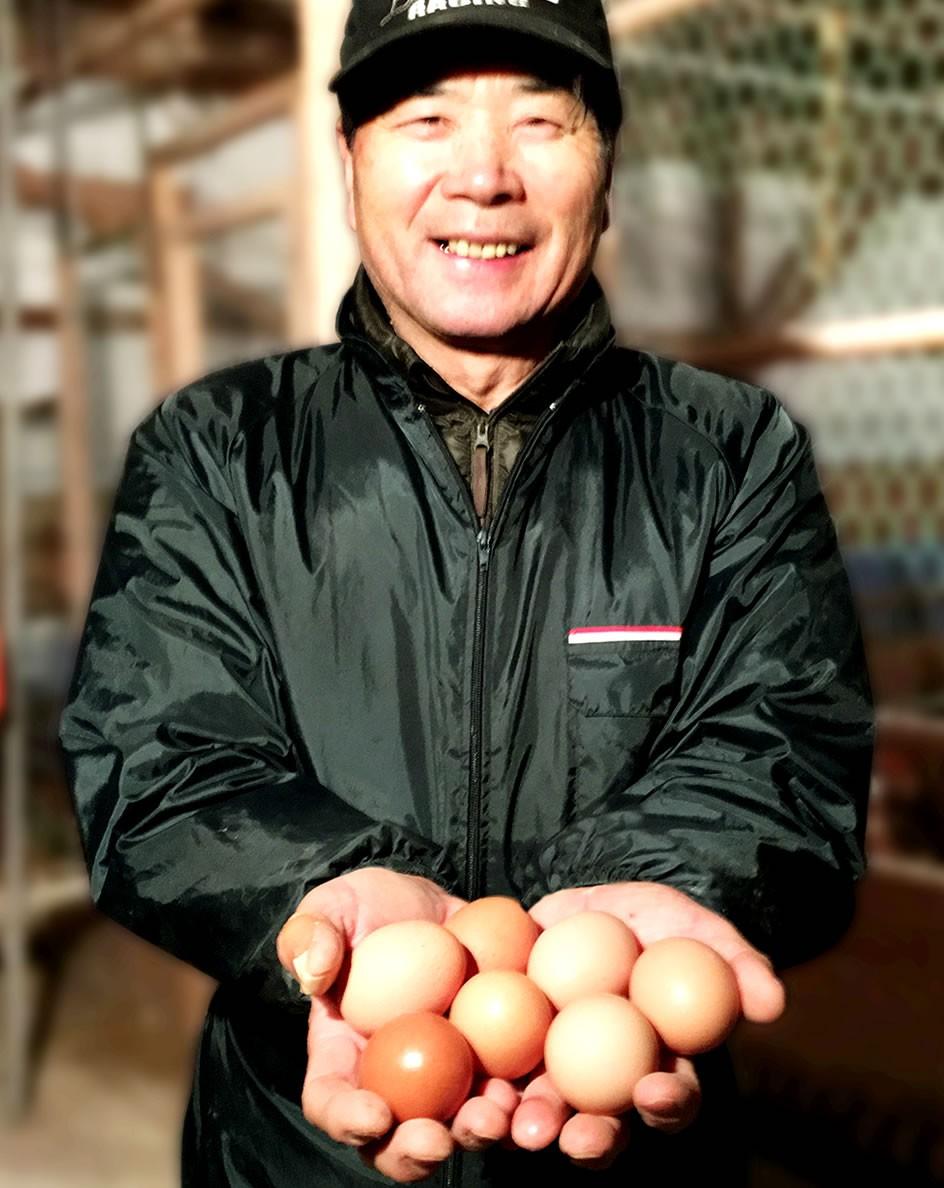 青森田子たまご村 Yahoo!店 ヤフー店 通販 新鮮な緑の卵緑の一番星などの産みたて卵を産直でお取り寄せ!