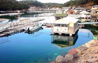 英虞湾のアコヤ真珠養殖場