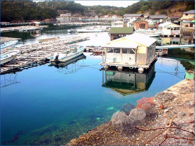 アコヤ真珠養殖工場