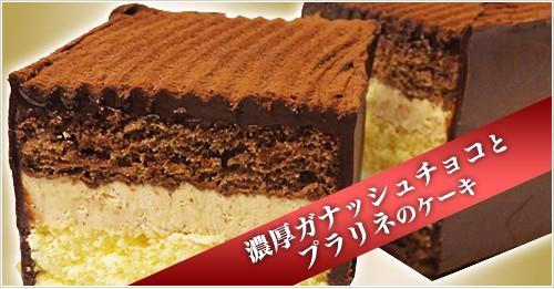 濃厚ガナッシュチョコとプラリネのケーキ