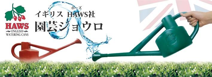 HAWWS