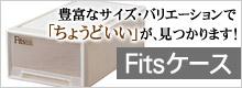 Fitsケース
