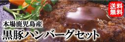 送料無料!本場鹿児島産・黒豚100%ハンバーグセット