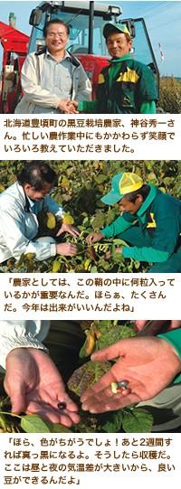 、黒豆栽培農家のひとりである神谷秀一さんの畑