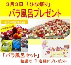 小春の懸賞企画 「3月3日ひな祭り・バラ風呂セットプレゼント」