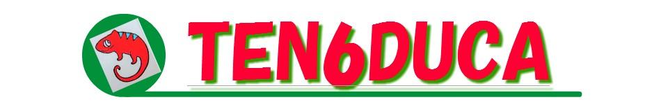 可愛い雑貨屋 TEN6DUCA Yahoo!店 ロゴ