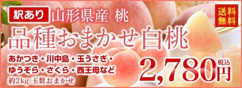 訳あり 品種おまかせ 白桃 桃 もも 山形県産 約2kg (玉数おまかせ) 8月上旬〜出荷予定