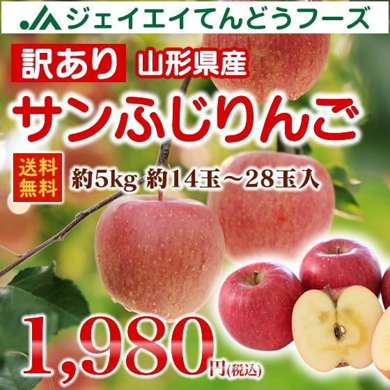 訳あり 山形県産 サンふじ りんご 約5kg (14〜28玉入り) リンゴ 林檎 送料無料 (一部地域は別途送料)