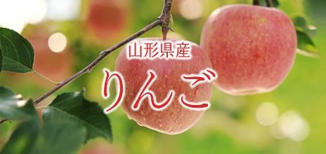 山形のりんご JAジェイエイてんどうフーズ
