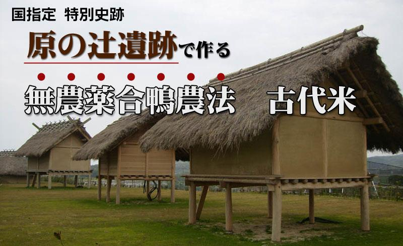 神雕乱lun_nantekaitelunka.wakannai这是英语还是