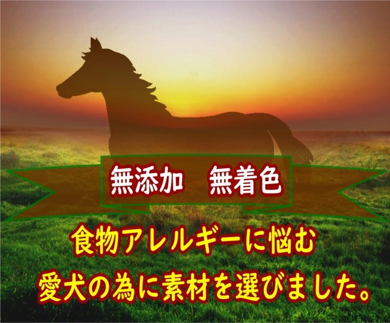 馬ホルバー