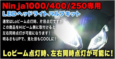 Ninja1000/400/250専用LEDヘッドライトバルブ