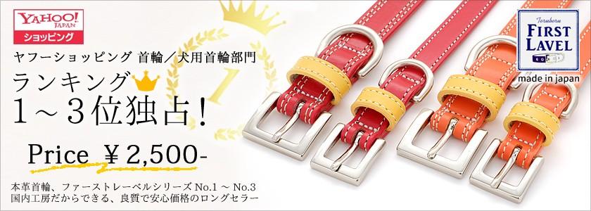 革製の犬首輪と犬リード